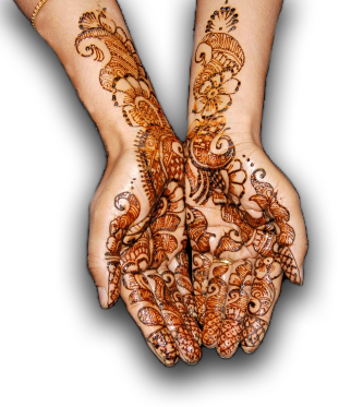 Henna by Seema | Exquisite mehndi and make up applied for all ...